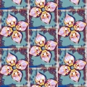 Framed Blooms - V.6