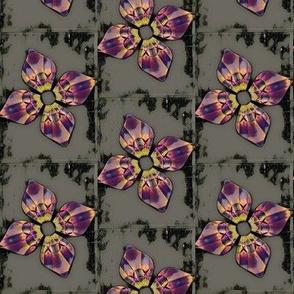 Framed Blooms V.10