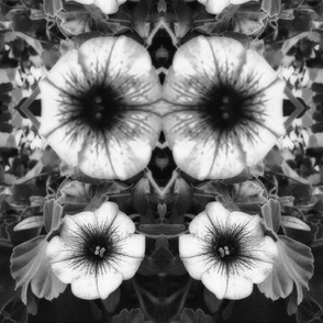 Flower-Eye