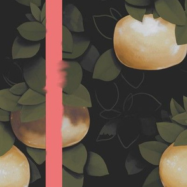 Pink Grapfruit