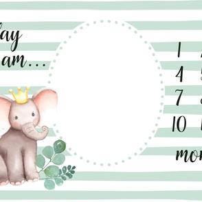 Baby milestone blanket with elephant