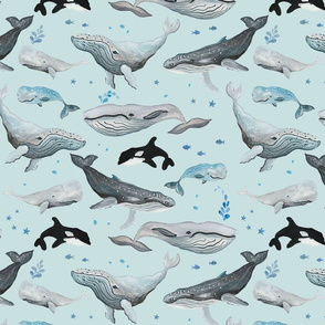 Whale Fun Pale Blue Ground (Medium Scale)