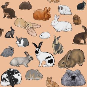 BunnyFabricPeach