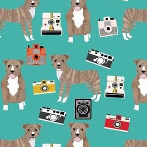 pitbull brindle camera fabric - pitbull  fabric, camera fabric, polaroid,