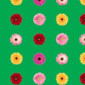 Daisy Art-70s Green