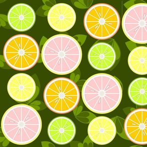Sliced Citrus with Leaves
