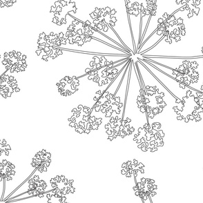 Floral Queen Anne's Lace Monochrome (jumbo)
