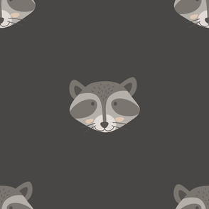 Cute Raccoon pattern