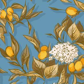 Kumquat Teal