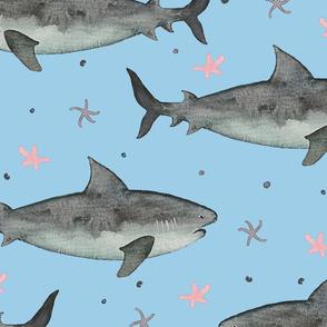 Watercolour Sharks Blue Ground (Jumbo Scale)