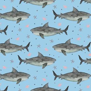 Watercolour Sharks Blue Ground (Medium Scale)
