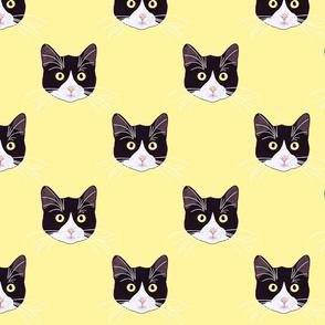 BLACK&WHITE CAT YELLOW