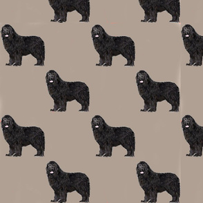 Newfie Taupe
