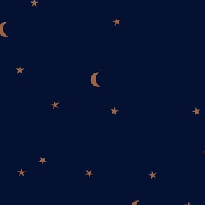 Dreamy night counting stars under the moon woodland camping trip  universe christmas winter navy blue rust
