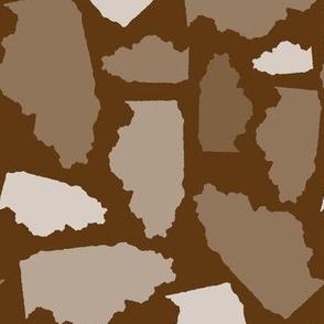 Illinois State Shape Pattern Brown-01-01