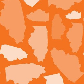 Illinois State Shape Pattern Orange-01-01