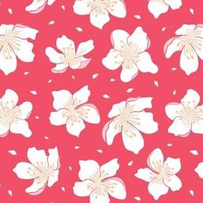Cherry-blossom-vivid-pink