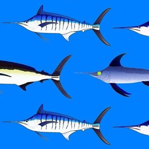 5 billfish on sea blue sized