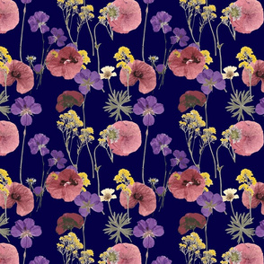 Pressed flowers in dark blue