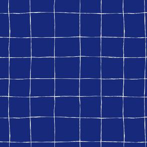 Casual Grid-white-on-Ultramarine