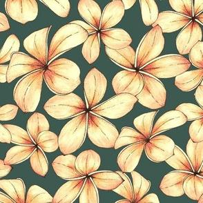 Plumeria - green