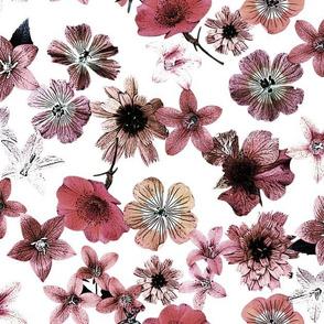 M81K Flower Power