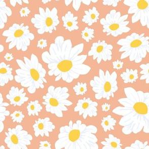 Field of Daisies in Peach