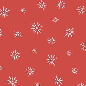 fireworks_seaml_red_CW