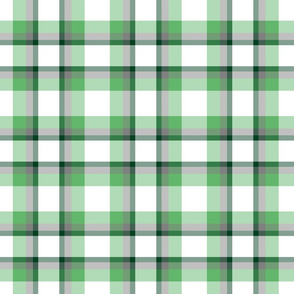 Fresh Green Chive / Plaid / Check