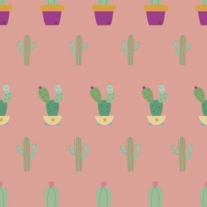 catus smealess pattern