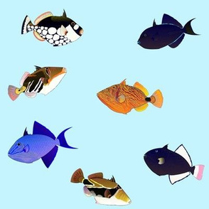 7 Indo-Pacifc Triggerfish Scatter on light blue