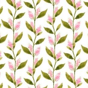 Dulci Leafy Lines, Large