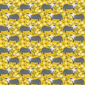 Yellow Badgers, Extra Small