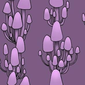 Twilight Shrooms