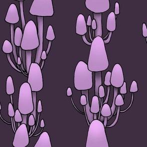 Midnight Shrooms