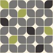 Leaves Gray Green