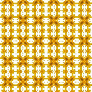 Yellow Petal Kaleidascope - V.2