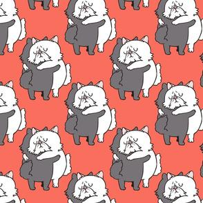 Persian Cat hugs_8x8