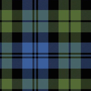 "Campbell tartan, 12"" muted bright"