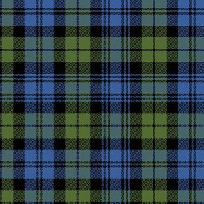 "Campbell tartan, 6"" muted bright"