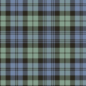 "Campbell tartan, 6"" very faded"