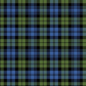 "Campbell tartan, 4"" muted bright"