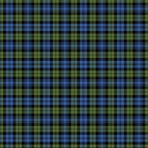 "Campbell tartan, 2""  muted bright"