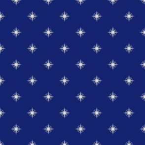 compass on navy blue