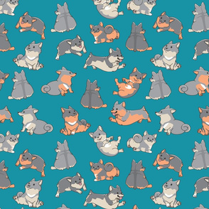 Swedish Vallhund Pattern
