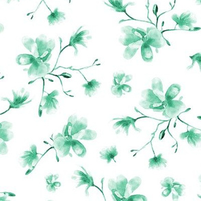 Emerald magnolia • watercolor florals