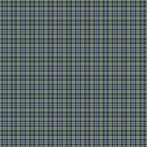 "Campbell tartan, 1""  very faded"