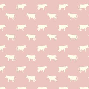 cows rose pink