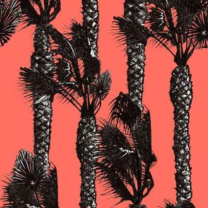 Windy palms on coral sky