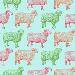 Colorful Sheep on Sky Blue